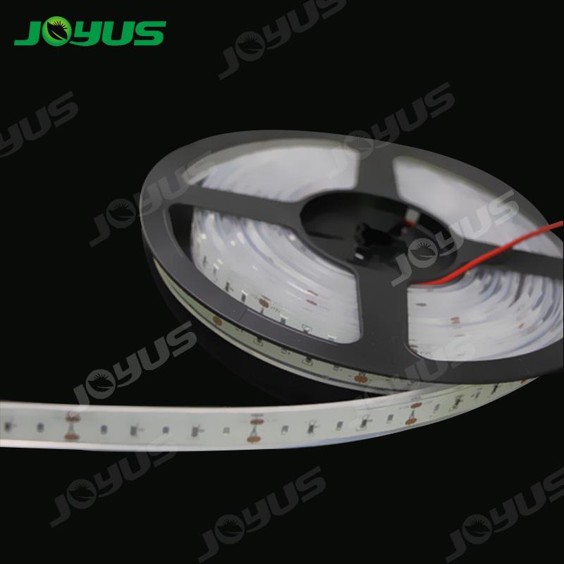 JOYUS  Array image195