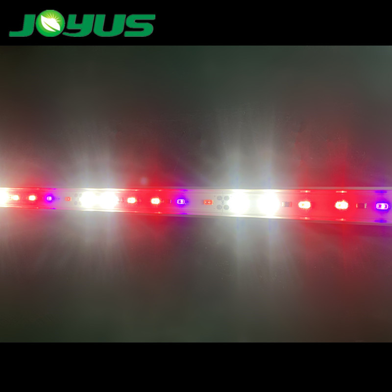 DIY led grow light strips 24v smd5630 5000k 660nm 395nm uv 730nm infrared for plant vegetable fruit 60leds/m IP40
