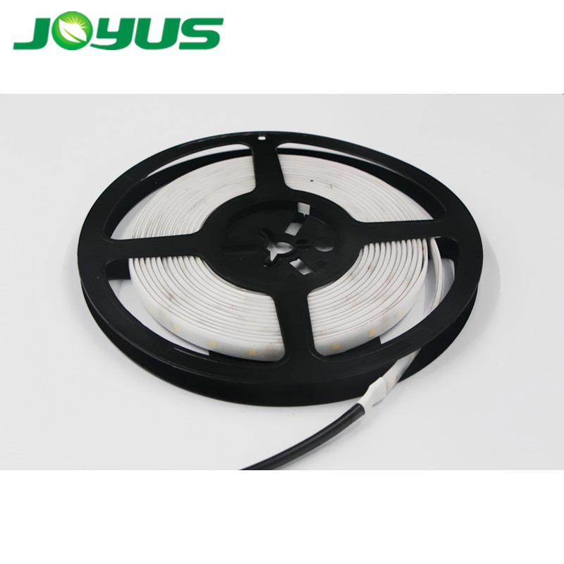 customized 2021 new product outdoor 10-30V smd2835 long led strip light 30m for truck popular in Europe