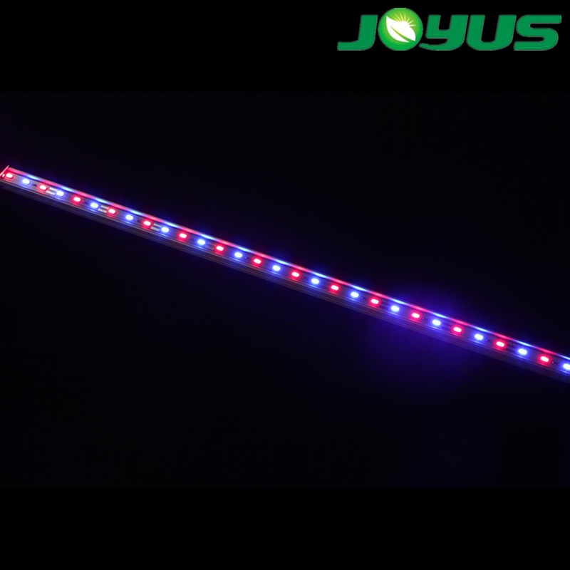 alibaba english online trade manager 12v led grow light bar red blue 1:1  with aluminium extruction heat sink ip20