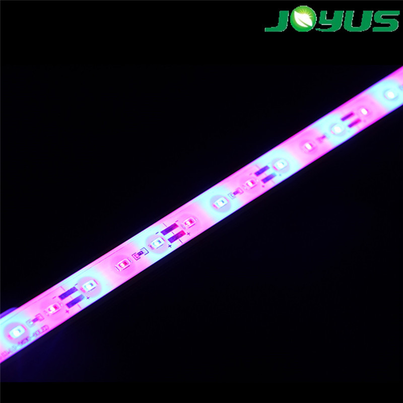 ip68 strip hydroponic led grow strip lighting smd5630 60 leds waterproof 660nm 450nm 1 : 1 for plant growing