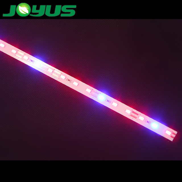 led diode 630nm 660nm red strip light 450nm blue bare ip20 non-waterproof for vegetable plant growth 3R:1B