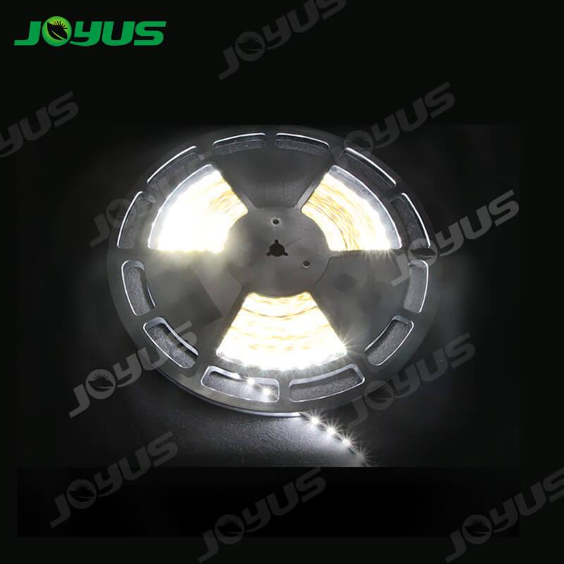 JOYUS  Array image8